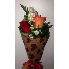 Ramo 2 Rosas de Color